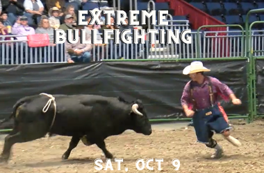 More Info for Extreme Bullfighting